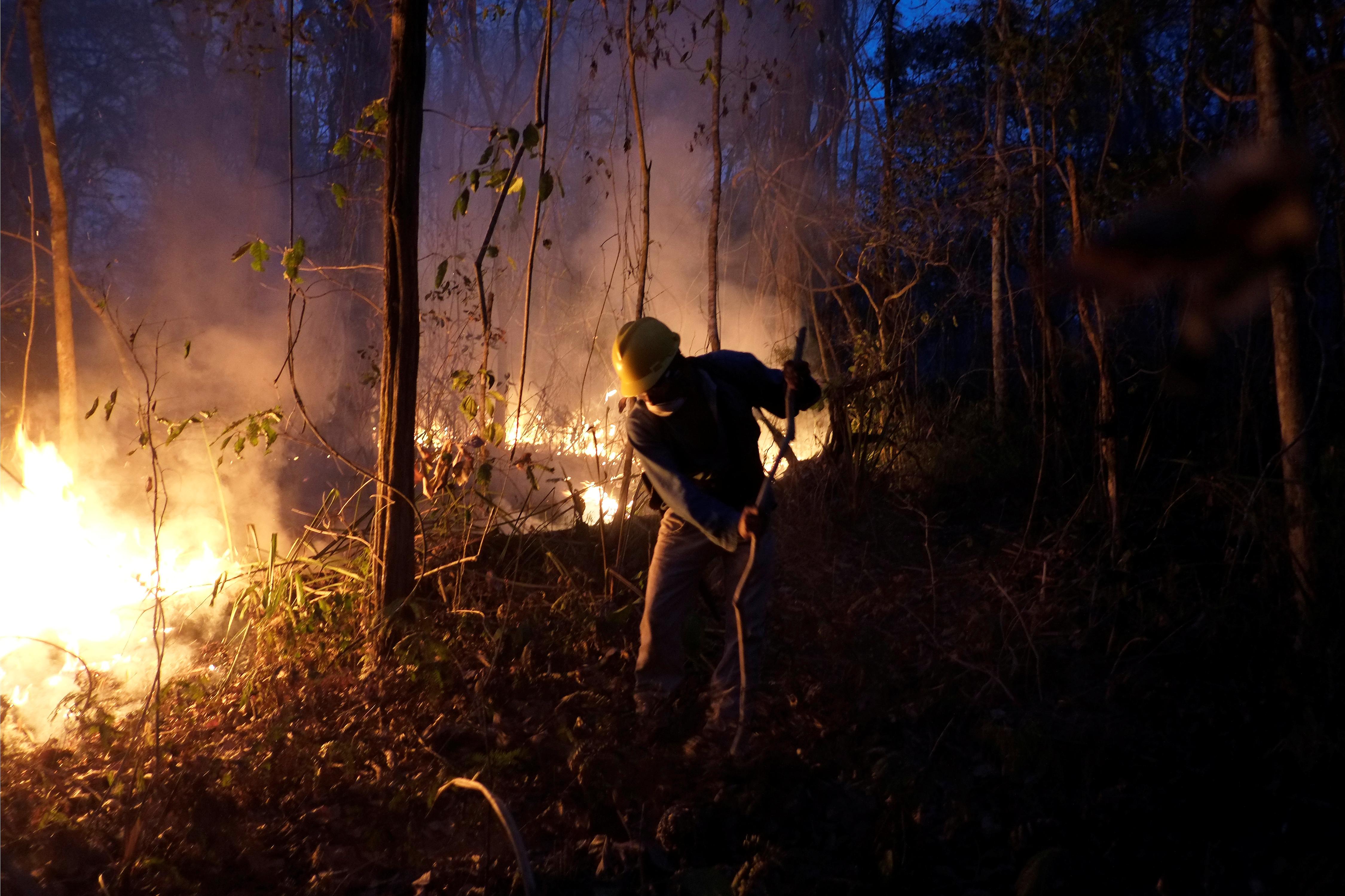 رجال الاطفاء تسعى للسيطرة على النيران
