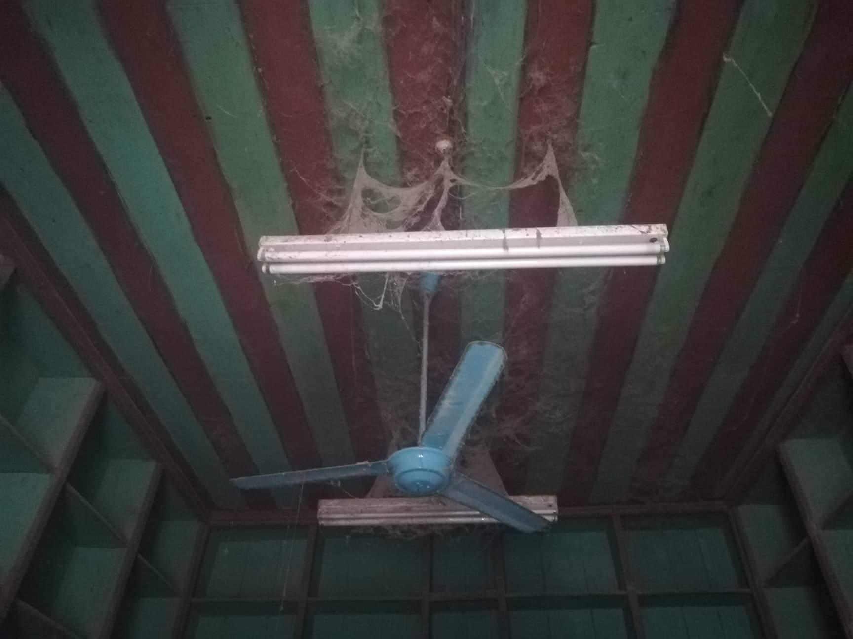 سقف البنك من الخشب