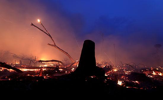 الحرائق فى الأمازون