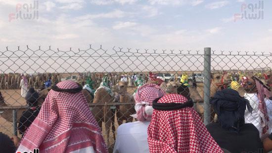 مهرجان-ولى-العهد-لسباقات-الهجن-العربية--(7)