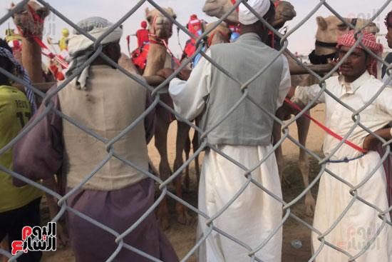 مهرجان-ولى-العهد-لسباقات-الهجن-العربية--(6)