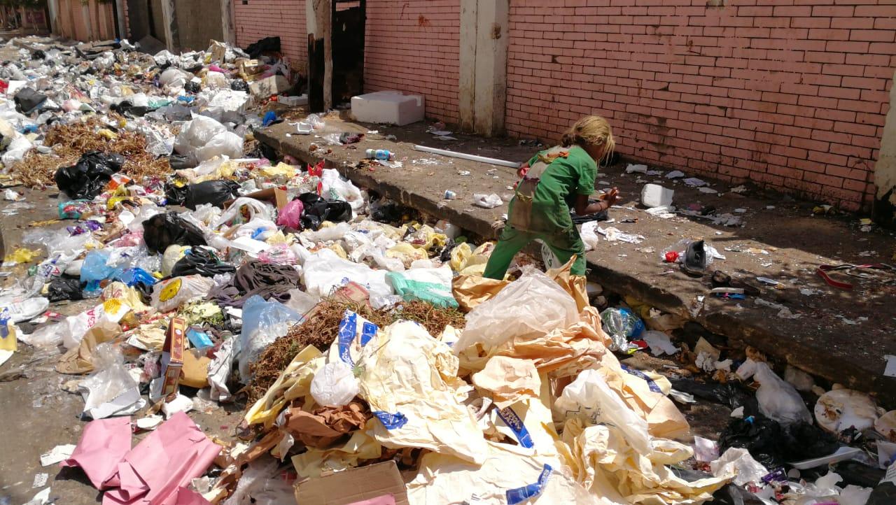 القمامة تحاصر مدرسة ناصر الثانوية الزراعية  (1)