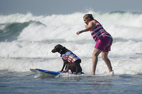 صاحبة كلب خلال المسابقة