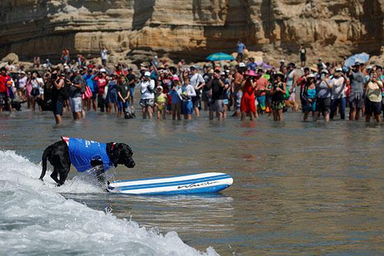 المئات على الشاطئ تتابع المسابقة