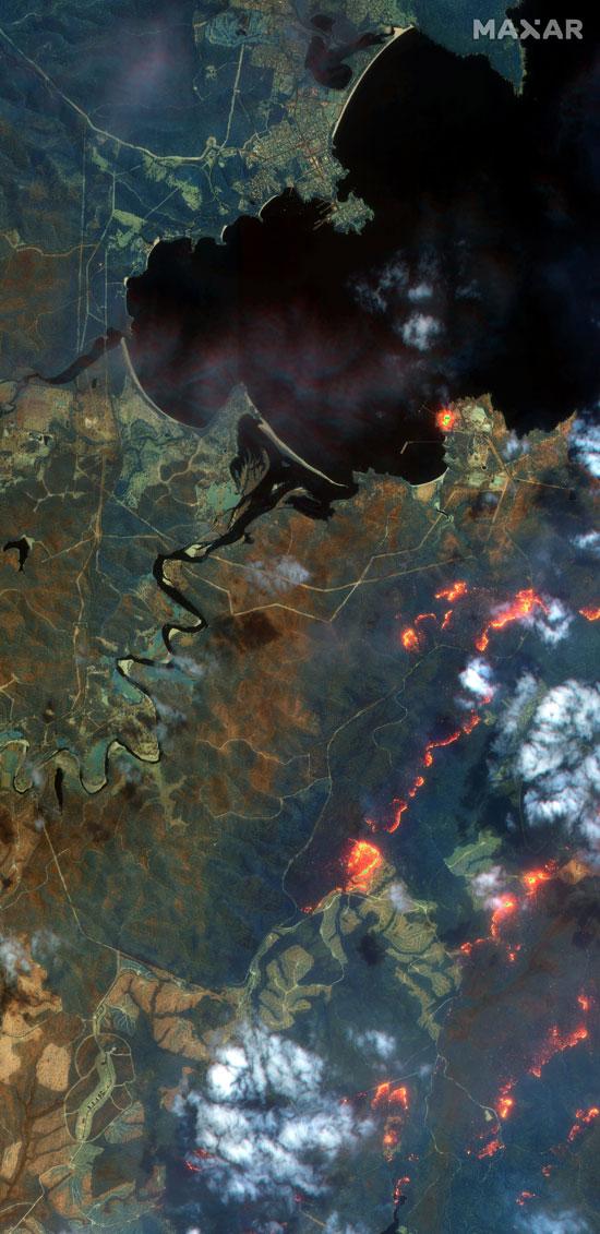 النيران فى غابات استراليا