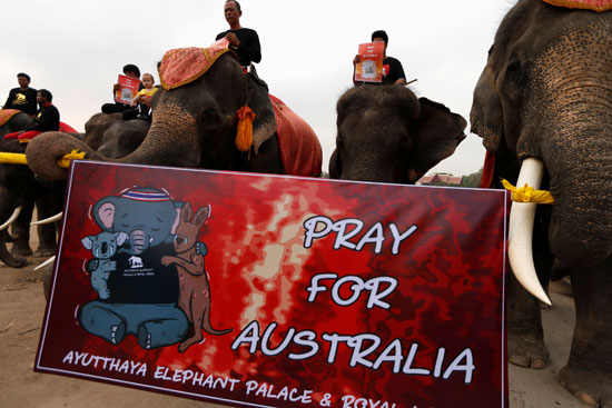 لافتة-بعنوان-صلوا-من-أجل-أستراليا