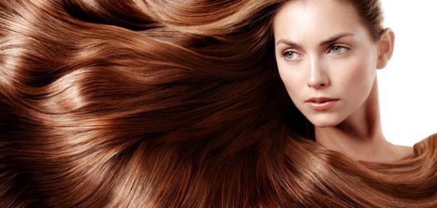 الشعر البنى