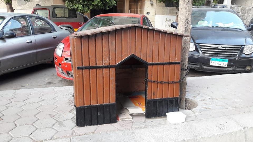 منزل الحيوانات الضالة