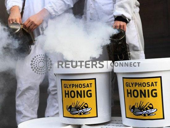 عبوات-العسل-الملوث