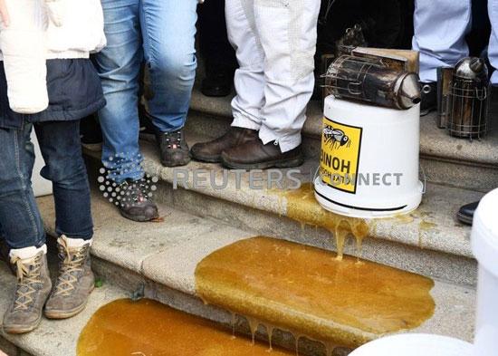 العسل-الملوث-على-سلالم-وزارة-الزراعة