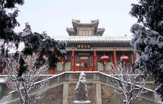القصر الصينى