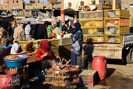 سوق فراخ (25)