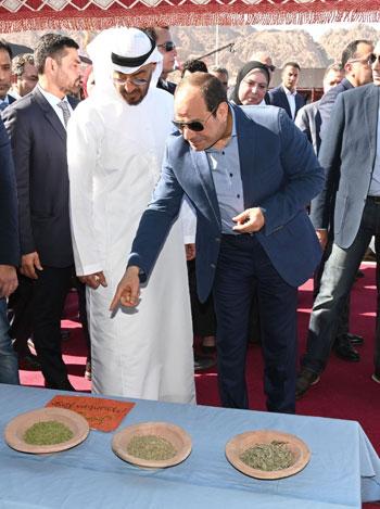 الرئيس عبد الفتاح السيسى والشيخ محمد بن زايد آل نهيان ولي عهد أبوظبي يشاهدان منتجات جنوب سيناء