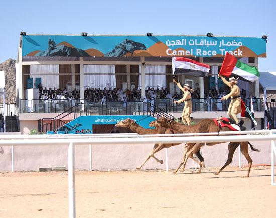 علم مصر والإمارات يرفرف مهرجان شرم الشيخ التراثي الدولي
