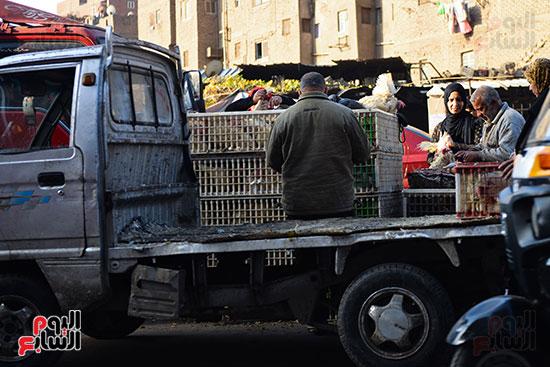 سوق فراخ (5)