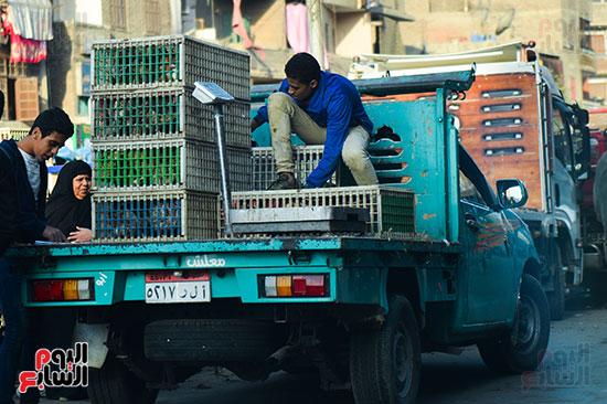 سوق فراخ (4)