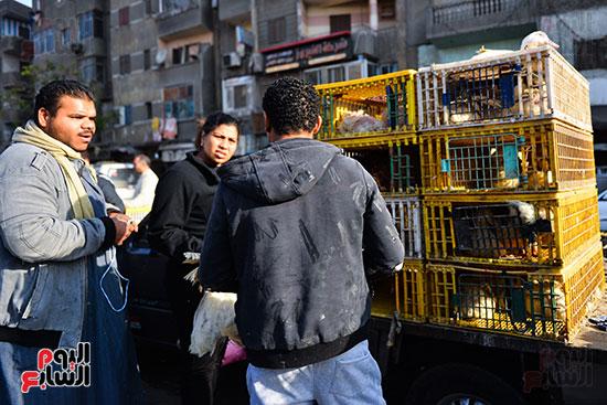 سوق فراخ (13)