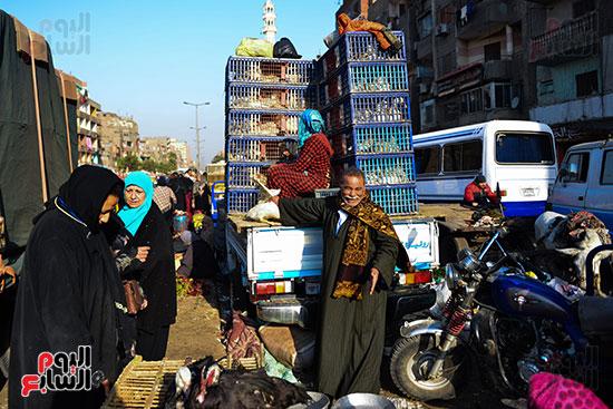 سوق فراخ (14)
