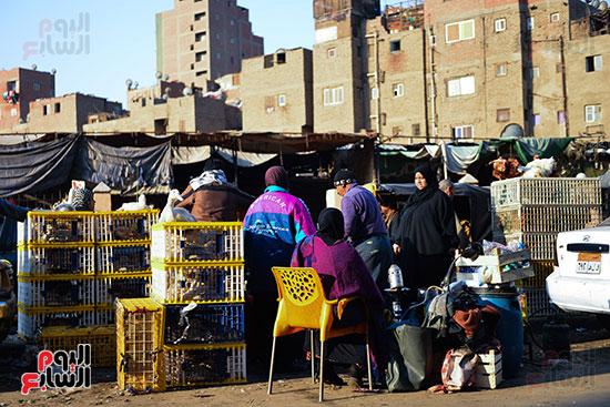 سوق فراخ (2)