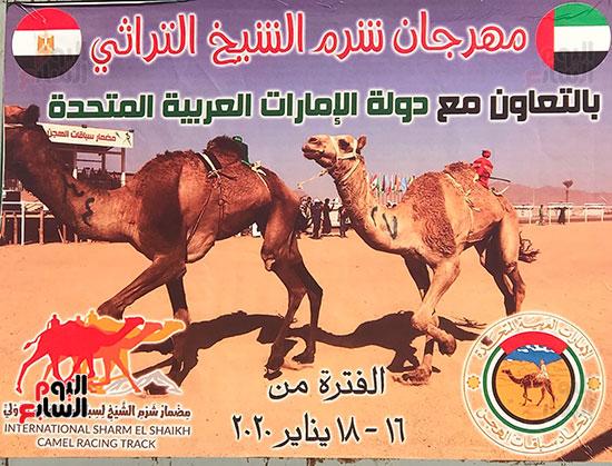مدينة شرم الشيخ تستضيف أكبر حدث تراثى عربى بعد ساعات (5)