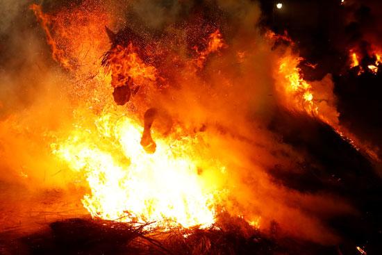 فرس يقتحم النيران