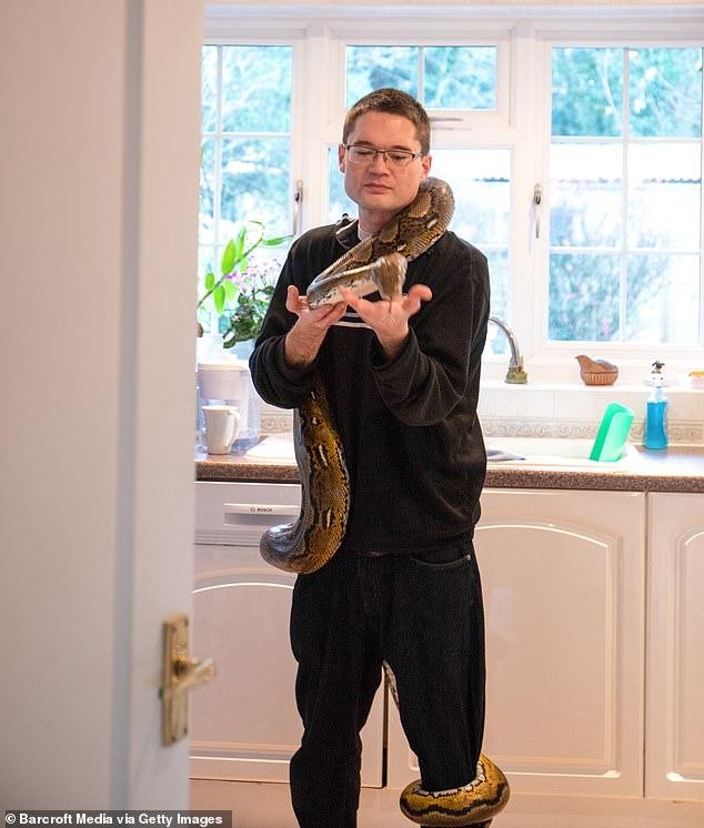 والد الطفلة مع احدي الثعابين