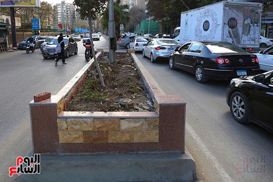 حرمان سكان الشارع من الأشجار