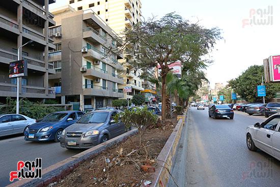 تقطيع اشجار شارع محى الدين ابو العز