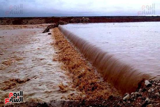 أمطار-الخير-تروي-الزراعات-بالوديان-وتملأ-خزانات-السدود-والآبار-بصحراء-مطروح-(1)