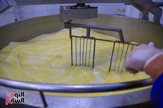 فنتاس التحضير الجبنة الرومي