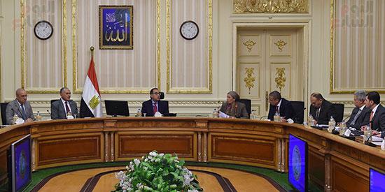 لجنة إعادة التوازن البيئي  (4)