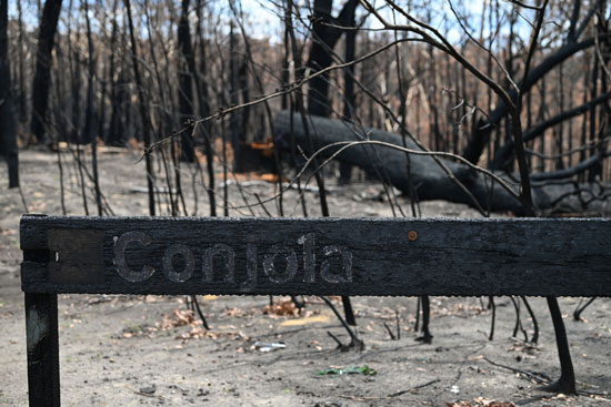 غابات-أستراليا-بعد-الحرائق