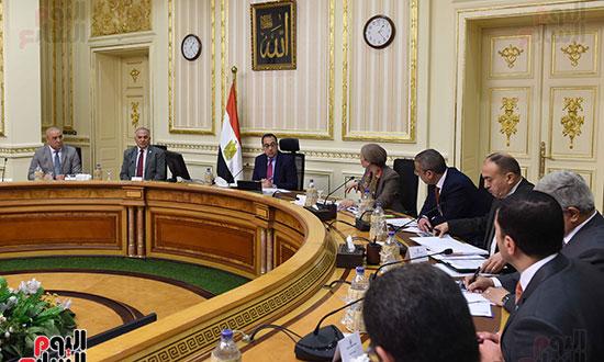 لجنة إعادة التوازن البيئي  (3)