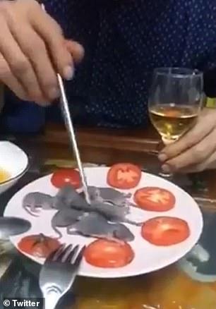 رجل آسيوى يتناول فئران حية