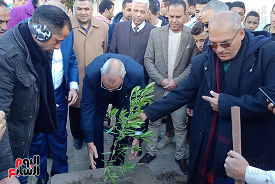 محافظ القليوبية يزرع شجرة