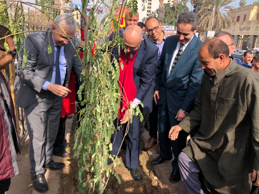 مبادرة اتحضر للأخضر لزراعة الاشجار المثمرة بالغربية (2)