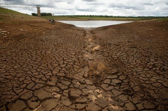 جفاف الأراضى يهدد بمجاعة لنصف سكان زيمبابوى