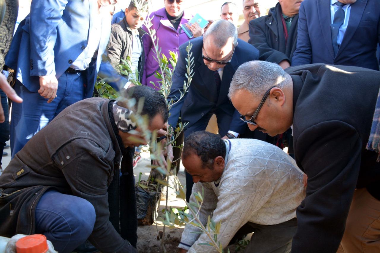 محافظ القليوبية بمبادرة التحول للأخضر لزراعة الاشجار المثمرة (6)