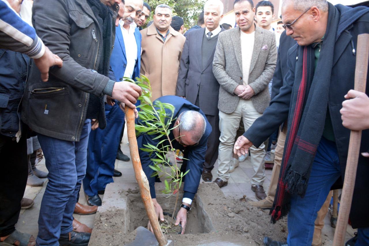 محافظ القليوبية بمبادرة التحول للأخضر لزراعة الاشجار المثمرة (3)