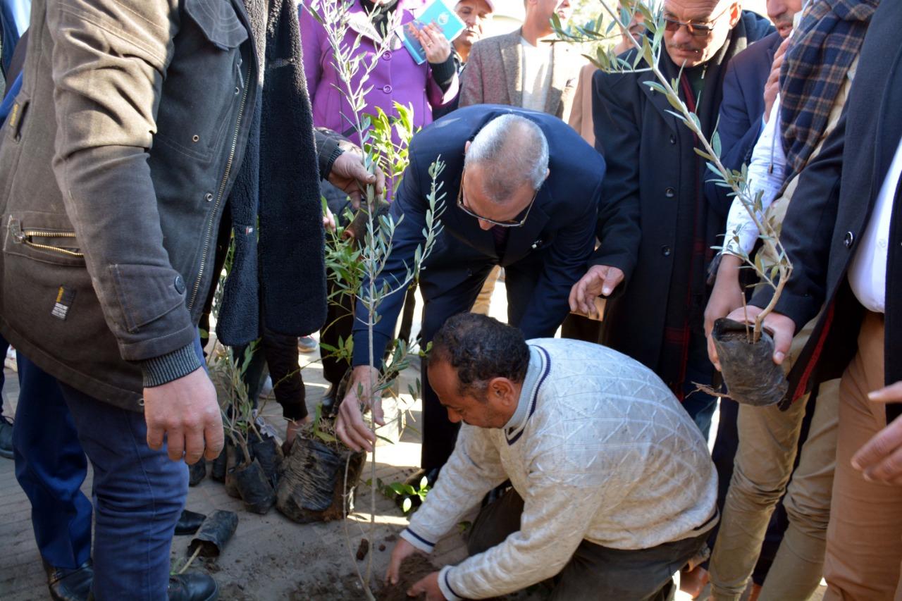 محافظ القليوبية بمبادرة التحول للأخضر لزراعة الاشجار المثمرة (7)