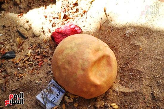 16-شباب-وكبار-الاقصر-يشاركون-في-حملات-تنظيف-المقابر