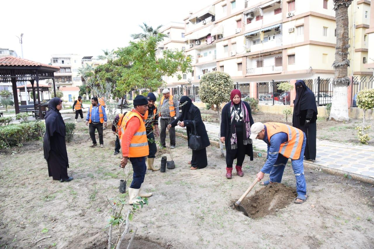 زراعة أشجار مثمرة ضمن مبادرة اتحضر للأخضر ببورسعيد (5)