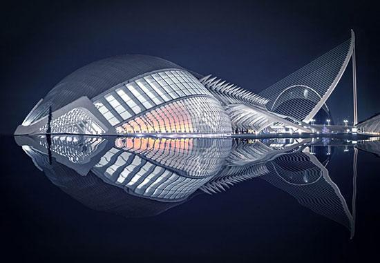 الصورة بعنوان سمكة للمصور الإسبانى بيدرو لويس
