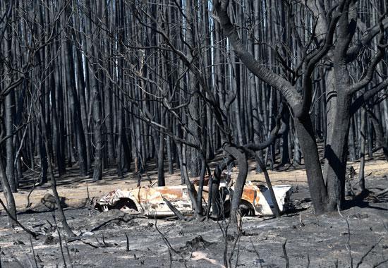منظر عام لأضرار الحرائق في جزيرة الكنجر الأسترالية