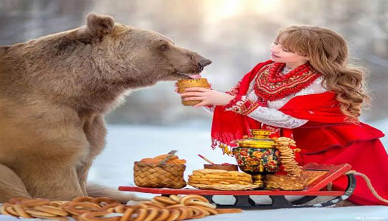 الدب الروسى الشهير