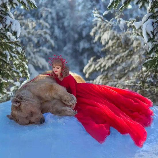 الدب الروسى خلال جلسة التصوير