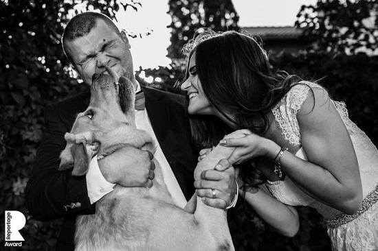عروسان مع كلب