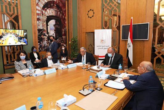 سامح شكرى وزير الخارجية ورئيس اللجنة العليا الدائمة لحقوق الإنسان (4)