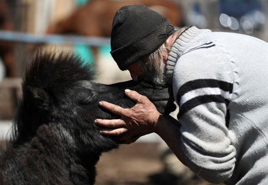 والتر كاربوني يقبل الحصان Peque