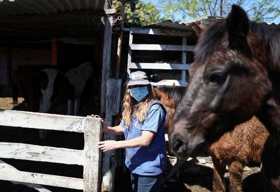 نورا-بيريز-رئيسة-الجمعية-مع-الخيول